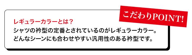 ブロードレギュラーカラー半袖シャツ[男女兼用](34-FB4527U)の説明3