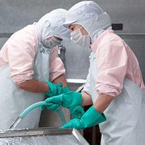 ピンクの食品白衣を導入している洗浄ゾーン