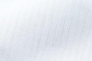 チトセのシャドーストライプ画像(31-EP7823)