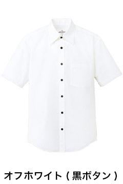 人気の半袖カラーシャツ(ホワイト)