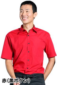 人気の半袖カラーシャツ(レッド)