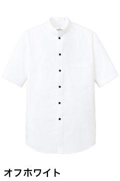 人気のスタンドカラー半袖シャツ(オフホワイト)