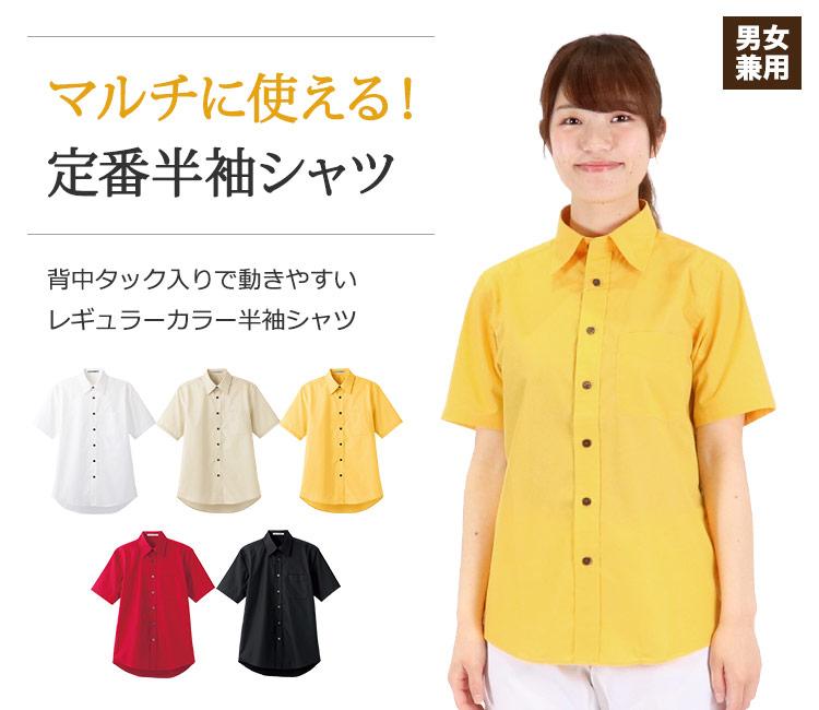 マルチに使えるレギュラーカラー半袖シャツ