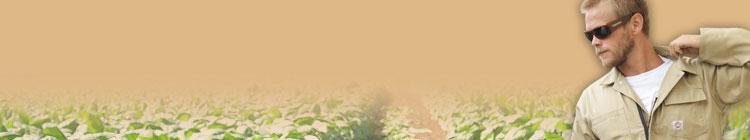 農作業におすすめのつなぎ